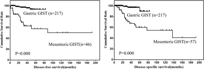 Comparison of DFS and DSS between mesenteric and gastric GISTs.
