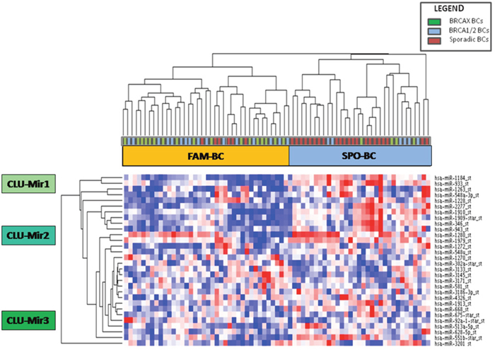 Unsupervised hierarchical clustering showing 28 differentially expressed miRNAs between familial (green and blue squares) and sporadic breast cancer cases (red squares) which cluster in two groups called FAM-BC and SPO-BC.