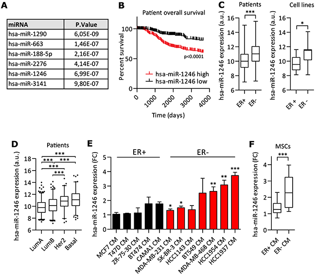 miR-1246 expression and regulation in MSCs and breast cancer.