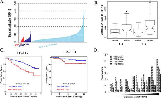 Gene expression profiling (GEP) analysis indicates TRIP13 is positively associated with myeloma development, disease relapse and poor prognosis in myeloma patients.