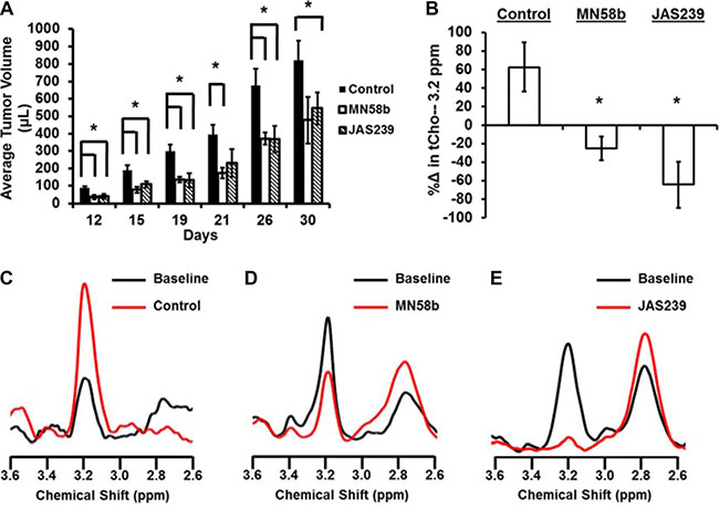 JAS239 exhibits ChoKα inhibition and slows breast tumor growth.