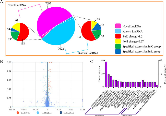 Expression of LncRNAs during Se deficiency process in broiler chick vein.