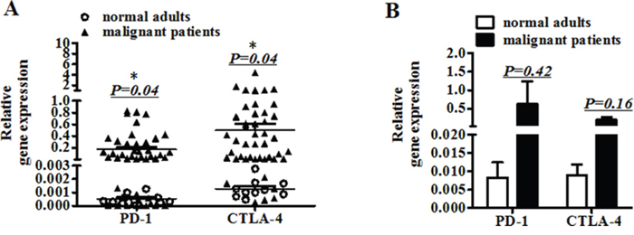 The gene expression of PD-1 and CTLA-4 in peripheral blood.