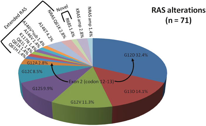 Proportion of RAS alterations identified by comprehensive genomic profiling.