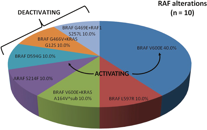 Proportion of RAF alterations identified by comprehensive genomic profiling.