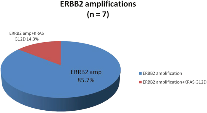 Proportion of ERBB2 amplifications identified by comprehensive genomic profiling.