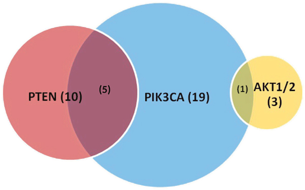 Proportion of PIK3CA, PTEN, AKT1/2 mutations identified by comprehensive genomic profiling with overlap.