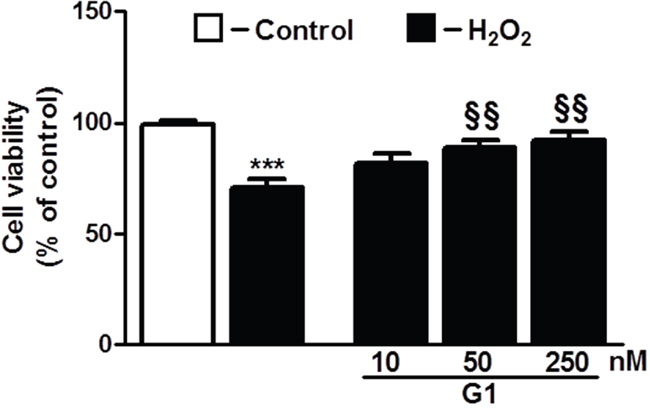 Dose-dependent effect of G1 on cell survival in response to oxidative stress.