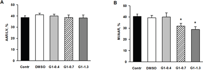 Effects of G1 on myocardial infarct size and area at risk in rats in vivo.