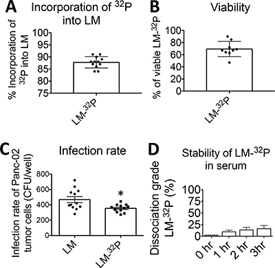 Generation and characterization of Listeria monocytogenes (Listeria)-32P.