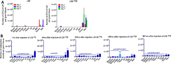 Effect of 32P on biodistribution of Listeria.