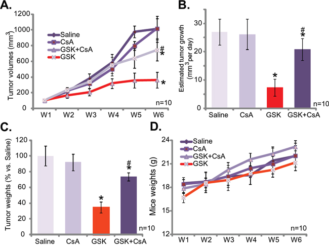 GSK1059615 inhibits SCC-9 tumor growth in nude mice.