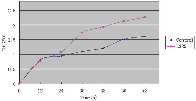 MTS assay for analysis of Huh7 cells.