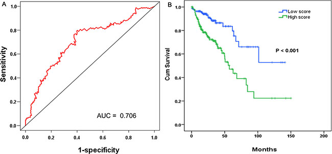 The prognostic performance of the four-differentially expressed lncRNA (DEL) signature of COAD.