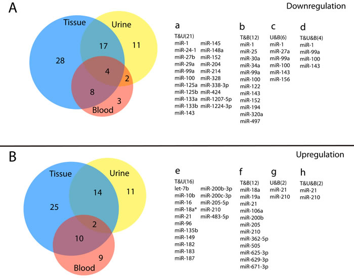 Venn diagram of multiple reported miRNAs in three biological samples.