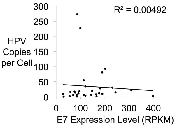 E7 Gene Expression Versus HPV Copy Number.