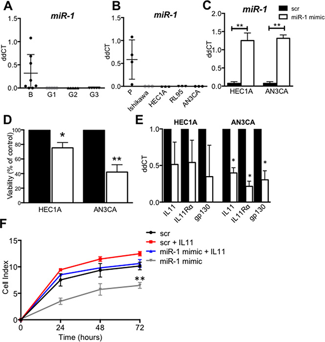 MiR-1 expression and regulation of IL11 in human endometrial cancer and cell lines.