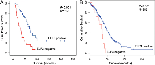 ELF3 is a favorable prognostic marker for ovarian carcinoma.