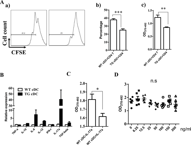 miR-34a overexpressing cDC inhibits CD4+ T cell activation.