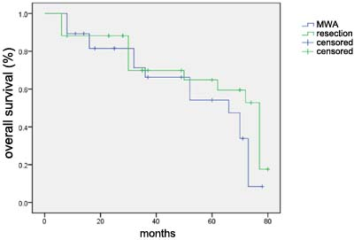 Overall survival curve for 28 patients in the MWA treatment group and 34 patients in control group.