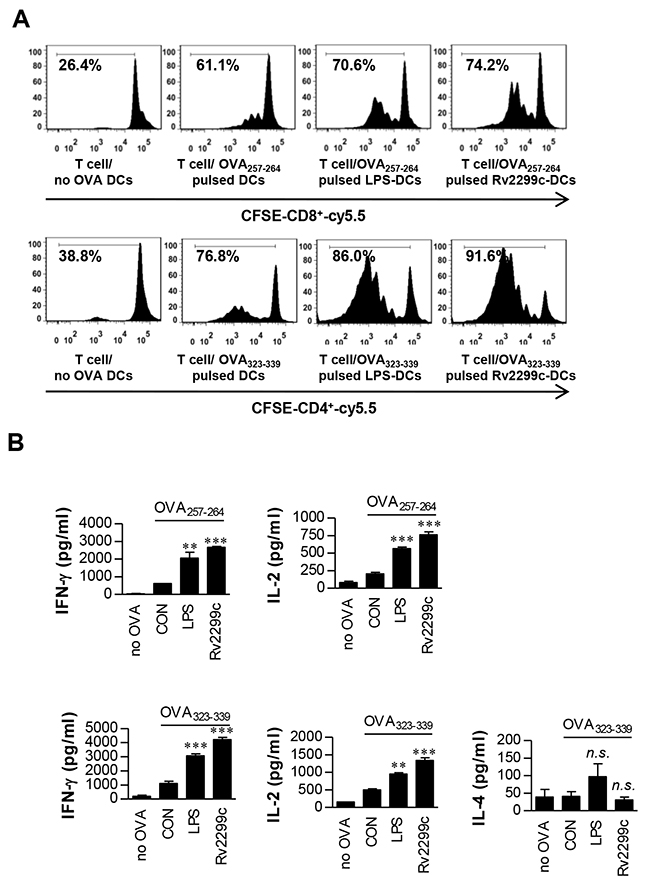 Rv2299c protein-treated DCs induce T-cell proliferation.
