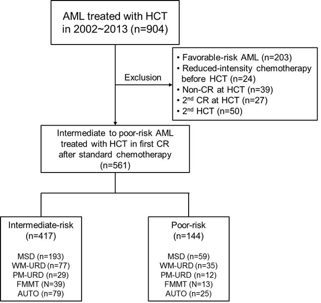 Consort diagram of analyzed patients in the current study.