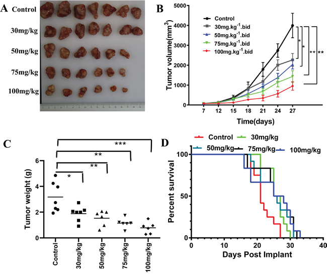 Effect of itraconazole on A375 melanoma xenograft and survival of athymic nude mice.