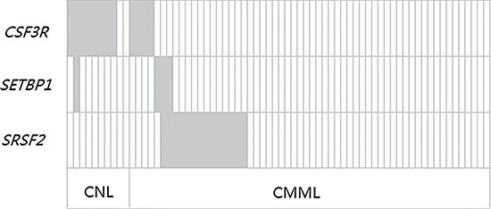 Frequency distribution of CSF3R, SETBP1 and SRSF2 genetic aberrations in CNL and CMML patients.