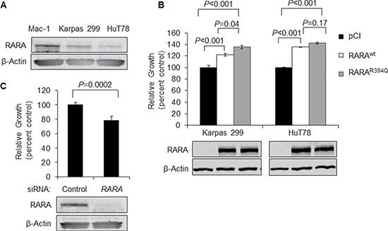 Overexpression of RARAwt or RARAR394Q drives T-cell lymphoma cell growth.