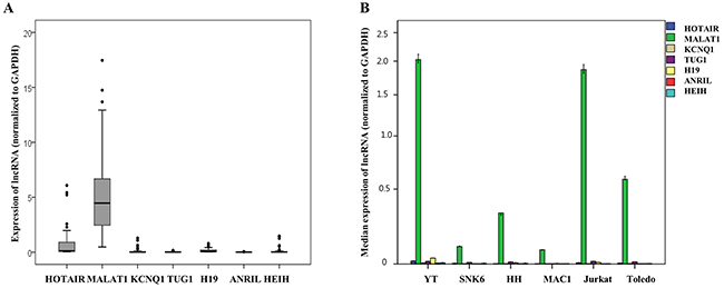 Quantitative expression analysis of seven long non-coding RNAs (lncRNAs) mRNA normalized to GAPDH expression in (A) clinical samples of patients with T and NK cell lymphomas and (B) six cell lines.