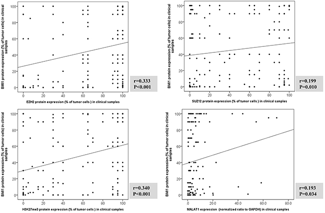 Correlation analysis between BMI1 protein expression and EZH2, SUZ12, H3K27me3, and MALAT1 in clinical samples of T and NK cell lymphomas.