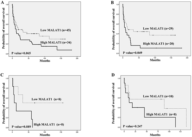 Overall survival analysis according to MALAT1 expression in T and NK cell lymphomas using Kaplan-Meier curves.