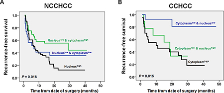 Impacts of TERT nuclear and cytoplasmic expressions on recurremce-free survival of patients with NCCHCC and CCHCC.