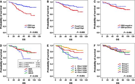 Kaplan-Meier survival analysis of overall survival according to major clinicopathologic features.