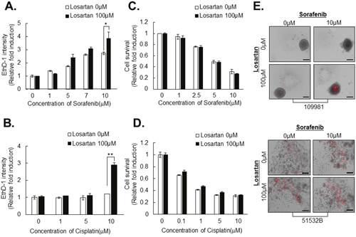 Losartan attenuates resistance to anticancer drugs in HCC cell line- and patient-derived primary HCC spheroids.