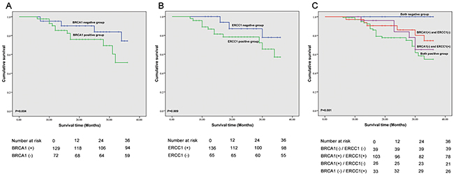 Correlation of BRCA1 and ERCC1 expression and overall survival.