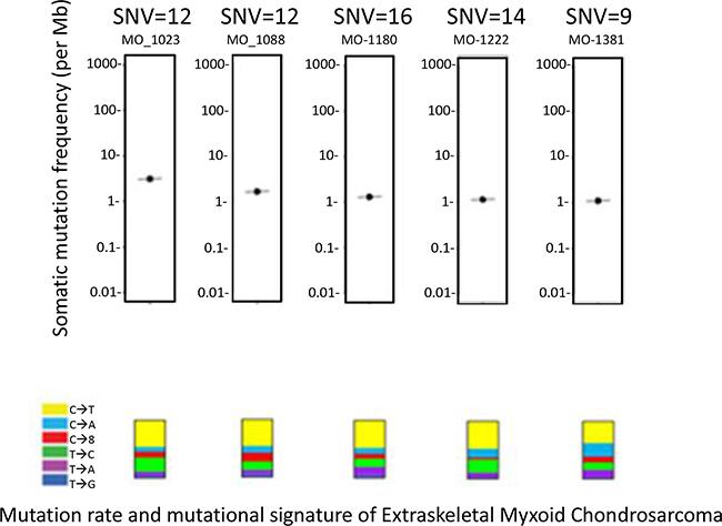 Mutation rate and mutational signature.