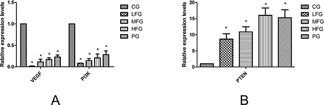 The quantitative real-time polymerase chain reaction in A549 cells.