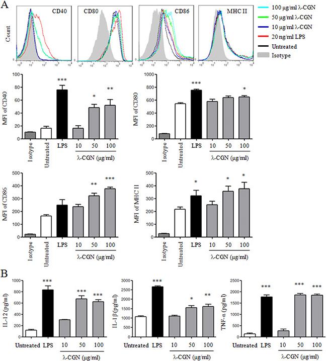 λ-CGN promotes DC maturation and cytokine production.