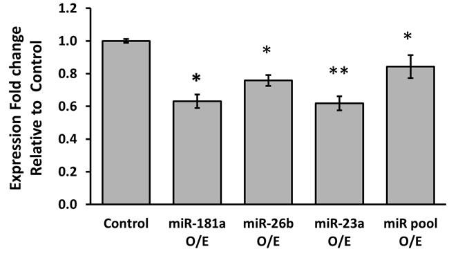 Average expression fold change of PR mRNA, 6 hours following over-expression of each miRNA.