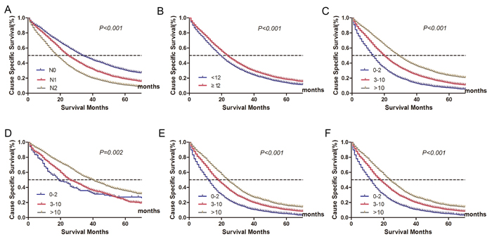 Cancer-specific survival (CSS) stratified by different lymph node status (A-C).