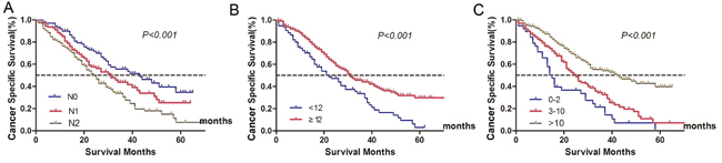 Survival curves of metastatic colorectal cancer treated with palliative surgery in Fudan University Shanghai Cancer Center according to different lymph node status.