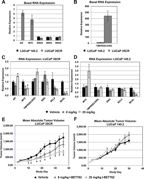 I-BET762 inhibits tumor growth in primary xenograft models with high
