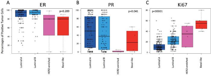 Levels of estrogen receptor (ER), progesterone receptor (PR) and Ki67-positive cells across the intrinsic subtypes within HR+/HER2-negative node-negative disease.