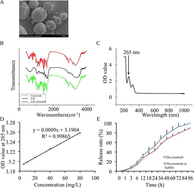 In vitro crizotinib release in chitosan microspheres.