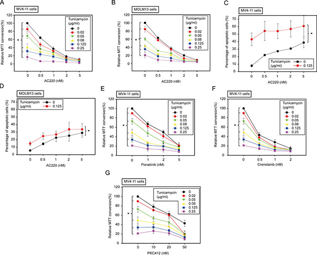Low doses of tunicamycin enhance the effect of FLT3 kinase inhibitors in human AML cell lines harboring FLT3ITD.