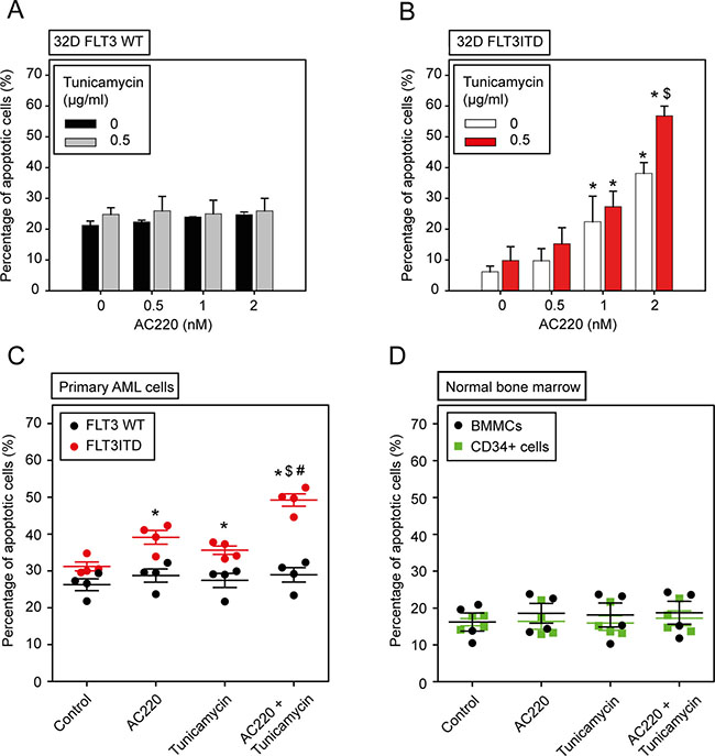 The combination of the kinase inhibitor AC220 and tunicamycin selectively enhances apoptosis of FLT3ITD-expressing cells.