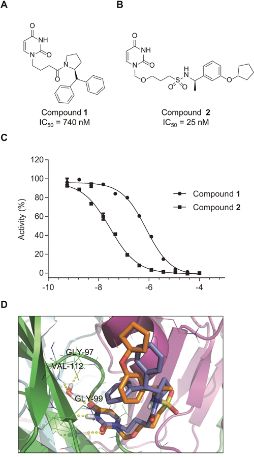 Compounds 1 and 2 inhibit dUTPase activity.