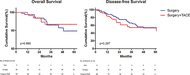 Overall and disease–free survival.
