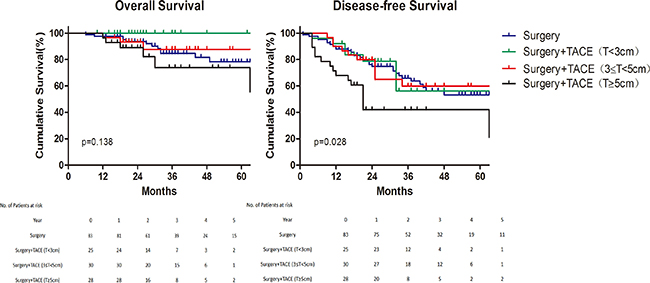 Subgroup analysis of survival for different tumor size.